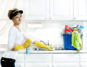 Perfect Clean - Home Cleaning